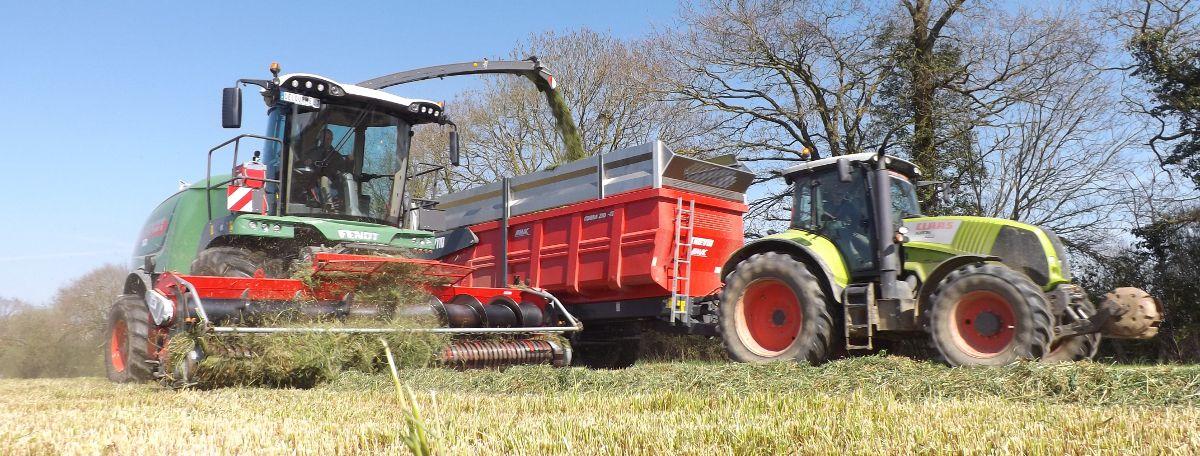 Remorque agricole COBRA 210 à l'ensilage